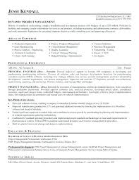 Sample Project Manager Resume Objective Sr Project Manager Resume Objective Freelance Sample Flood Theory 78