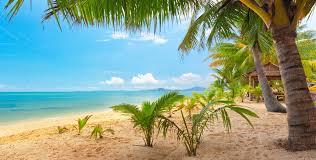 sand, Sea, Sky, Palm, Trees, Nature ...