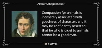Compassion Quotes Stunning TOP 48 ANIMAL COMPASSION QUOTES Of 48 AZ Quotes