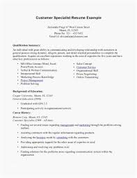 areas of expertise for customer service leading customer service resume summary examples on your