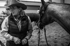 steps to writing horse essays american quarter horse essay american quarter horse