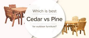 cedar vs pine which is best for