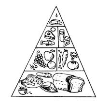Food Pyramid Coloring Sheet Giant Tours