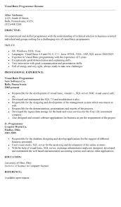 sample resume how to write visual basic programmer