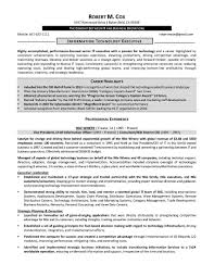Information Technology Objective Resume Free Resume Example And