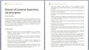 Managing Director Job Description Director Of Customer Experience Job Description Demand Metric 4