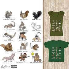 Squirrel Species Chart Score Squirrel Species Chart By Alice J On Threadless