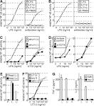 agonistic monoclonal antibody