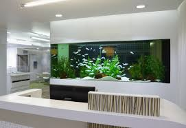fish tank for office. Built In Fish Tank, Calming And Helps A Stress Free Environment Tank For Office H