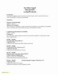How To Format A Resume Extraordinary Declaration In Resume Satisfying Declaration Format For Resume