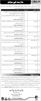 senior assistant tal plaza manager superintendent senior further information about job