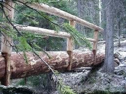 build a bridge over a creek build a log bridge across spring creek on an build a bridge over a creek how