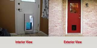 pet door installation doggy door