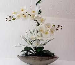 Resultado de imagem para orquideas branca