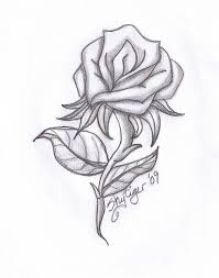 Small Picture Drawn rose interesting Pencil and in color drawn rose interesting