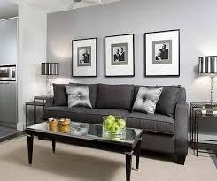 Light Gray Living Room