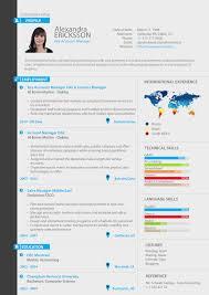 Key Account Manager Resume Key Account Manager Professional Resume Custom Resume Original 5
