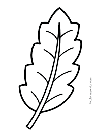 Fall Leaves Coloring Pages Page Of Leaf Maple Top Big