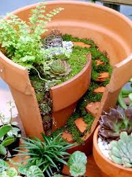 creative landscaping with broken plant