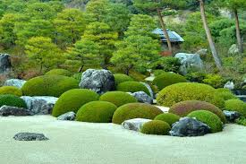 lovely japanese garden ideas showing round ornamental green planters on white gravel fields plus pine trees also decorative stones