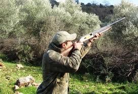 Image result for εικόνες κίσσα κυνηγι