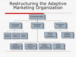 Product Management Organization Chart Product Management