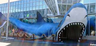 garden city beach sc. Giant Shark Store Entrance. Field Review By The Editors. Garden City Beach, South Carolina Beach Sc