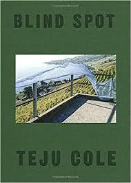 com blind spot teju cole siri hustvedt com blind spot 9780399591075 teju cole siri hustvedt books