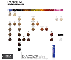 L Or Al Professionnel Diacolor Gel E Shine On Ammonia Free Demi Colour Free L