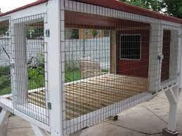 beagle dog kennels dog kennel kennel