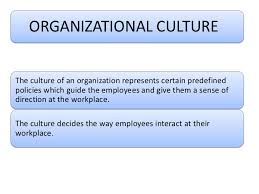 organisational culture examples 6 importance of organizational culture