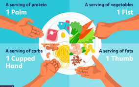 Getting The Portion Sizes Correct For A Weight Loss Diet Plan