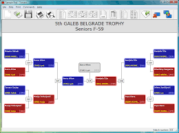 Taekwondo Bout Chart Software Tomato Complete Management Of A Martial Art Tournament