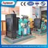 <b>Ricardo diesel</b> engine for generator Manufacturers & Suppliers ...