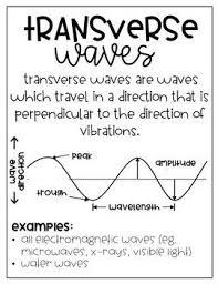 transverse and longitudinal waves venn diagram waves anchor charts diy growing bundle science anchor