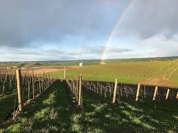 top seattle chef opening intimate walla walla wine country resort