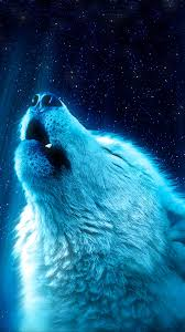 White Wolf Howling 8K Wallpaper #4.572