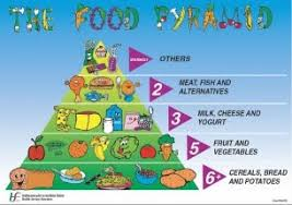 Food Pyramid Project What People Eat St Anthonys Food Project