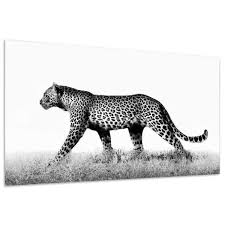 empire art direct leopard glass wall