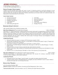 Channel Sales Manager Resume Sample Great Channel Sales Manager Resume Sample Images Entry Level 5