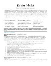 small business owner resume skills templates inssite small