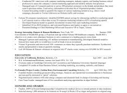 Business Marketing Resume It Resume Template Word Contoh Mind