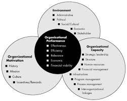 Organizational Assessment Template Custom Organizational Assessment
