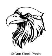 bald eagle template eagle head logo template hawk mascot graphic portrait of a