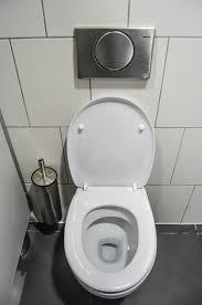 Hasil gambar untuk tips merawat wc