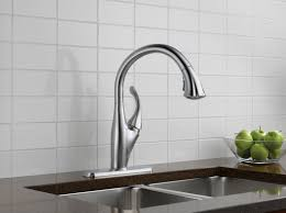 Delta White Kitchen Faucets Some Color Options For Delta Kitchen Faucet Kitchen Shower Single
