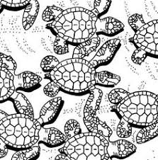 Small Picture Sea Turtle Pattern Coloring Page Free Printable Coloring Pages