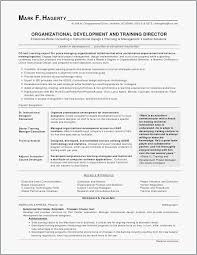 Skills Abilities For Resume Gorgeous Skills And Abilities On A Resume 44 How To Write A Resume As A