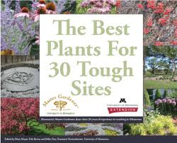Small Picture The Best Plants for 30 Tough Sites Garden University of