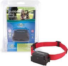 Petsafe Test Light Tool Replacement Amazon Com Petsafe Stubborn Dog Receiver Collar In Ground